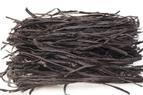 Alghe spaghetti di mare - fotografia