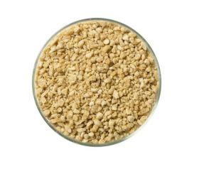 zucchero d'acero del canada - quebec